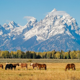 Visit Wyoming - Bucket List Ideas