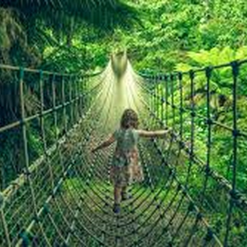 Visit Lost Gardens of Heligan - Bucket List Ideas