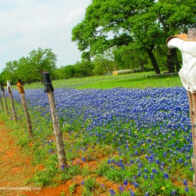 Drive down Willow City Loop Road in Texas - Bucket List Ideas