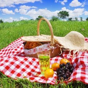 Organize a picnic - Bucket List Ideas