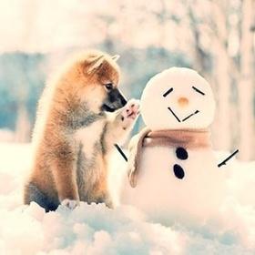 Build a (or many:D) snowman with my love - Bucket List Ideas