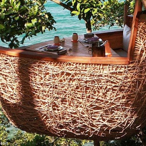 🍴 Eat at The Treetop Dining Pod @ Soneva Kiri Resort - Bucket List Ideas