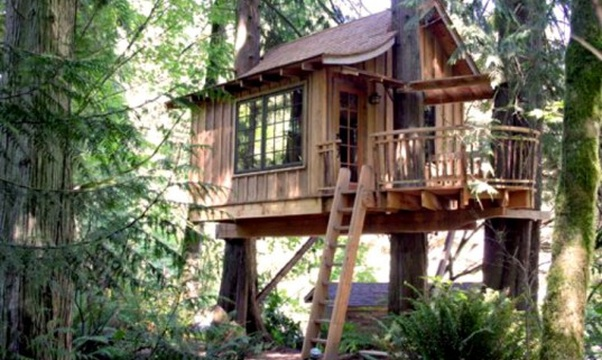 Sleep in a Tree house - Bucket List Ideas