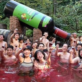 Swim in Red Wine @ the Yunessun Spa Resort in Haykone, Japan - Bucket List Ideas