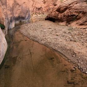 Hike through Halls Creek Narrows in Utah - Bucket List Ideas