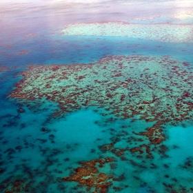 Snorkle in the great barrier reef - Bucket List Ideas
