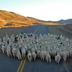 Go on a Roadtrip across South America - Bucket List Ideas