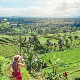 Go to the Jatiluwih rice terraces | Bali | Indonesia - Bucket List Ideas