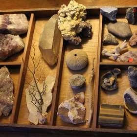 Build A Cabinet of Curiousities - Bucket List Ideas