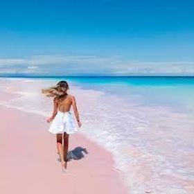 Walk on a Pink Sand Beach - Bucket List Ideas