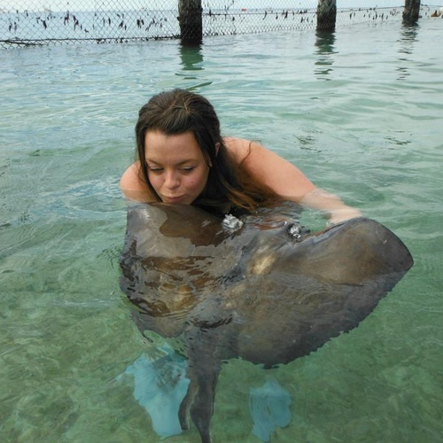 Swim with the stingrays - Bucket List Ideas