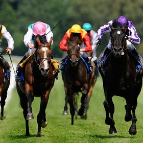 Go to watch horse racing - Bucket List Ideas