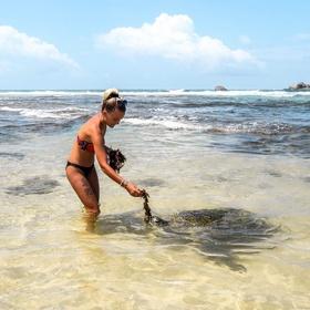 Visit Turtle Beach, Sri Lanka - Bucket List Ideas