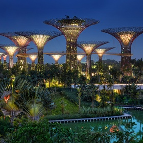 Visit Gardens by the Bay - Bucket List Ideas