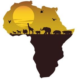 Go to Africa - Bucket List Ideas