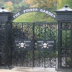Visit The Alnwick Garden, England - Bucket List Ideas