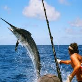 Go on a sea fishing experience - Bucket List Ideas