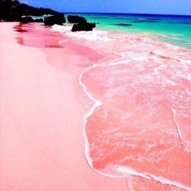 Walk on a Pink Sand Beach - Bucket List Ideas