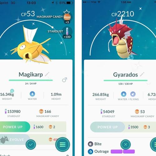 Catch a Shiny Pokemon - Bucket List Ideas