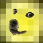 christel82's avatar image