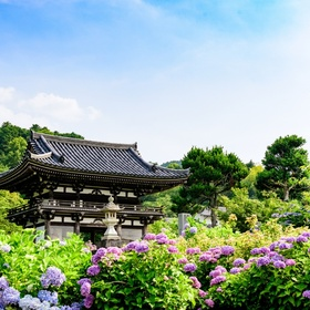 Visit Japan for a third time - Bucket List Ideas