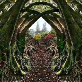 Visit Leach Botanical Garden (Portlands Secret Garden) in Portland Oregon - Bucket List Ideas