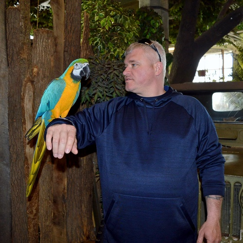 Hold a parrot - Bucket List Ideas