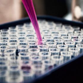 Trace my matrilineal DNA - Bucket List Ideas