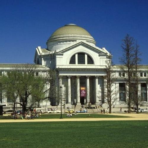 Tour the National Museum of Natural History - Bucket List Ideas