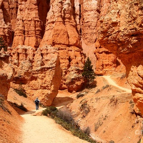 Hike the Queens Garden Trail in Bryce Canyon National Park - Bucket List Ideas