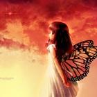 Eligia Wanderer's avatar image