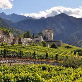 Visit a vineyard in Italy - Bucket List Ideas