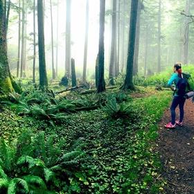 Hike the Tillamook Head Trail on the Oregon Coast - Bucket List Ideas