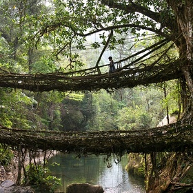 Walk on the Living Bridges in Meghalaya India - Bucket List Ideas