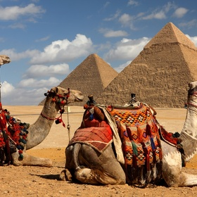 Ride a camel in Egypt - Bucket List Ideas