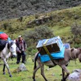 Ride a Mule on a Trek - Bucket List Ideas