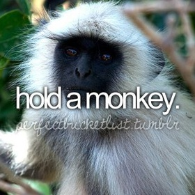 Hold a Monkey - Bucket List Ideas
