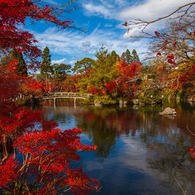 Visit Kyoto, Japan - Bucket List Ideas