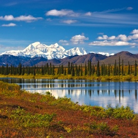 Go to Denali National Park, Alaska - Bucket List Ideas