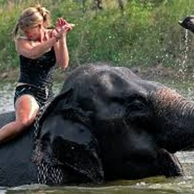 Ride an elephant - Bucket List Ideas
