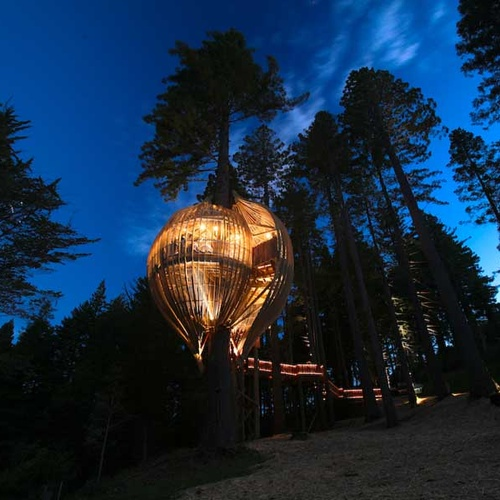 🍴 Eat at the Redwoods Treehouse Restaurant in Auckland, New Zealand - Bucket List Ideas