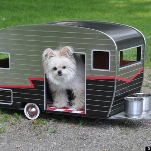 ⚜️Go on a Roadtrip in a Caravan/ Mini trailer - Bucket List Ideas