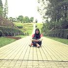 aza jamil's avatar image