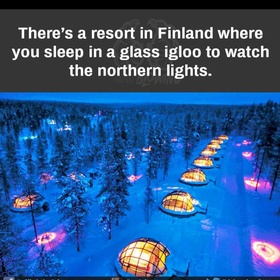 Witness the northern lights - Bucket List Ideas