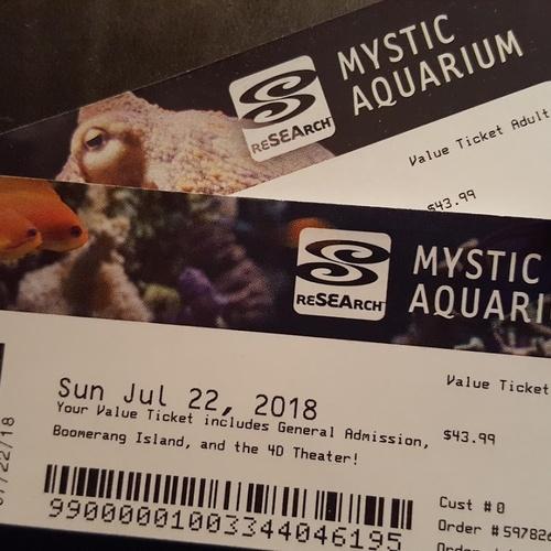 Go to Mystic Aquarium - Bucket List Ideas
