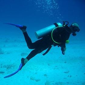 Go scuba diving! - Bucket List Ideas