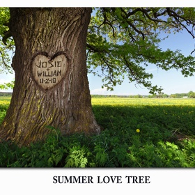 Carve a heart + my name + someone else's name into a tree - Bucket List Ideas