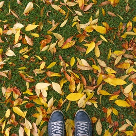 Walk in autumn leaves - Bucket List Ideas