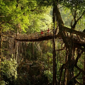 Visit Mawsynram In India - World's Wettest Place - Bucket List Ideas