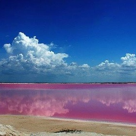 Visit the pink lagoons of Las Coloradas - Bucket List Ideas
